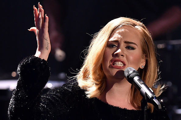 Adele Freaked Out At Concert Over Mosquito Bite