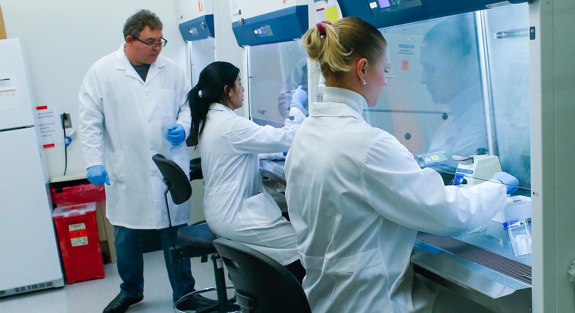 Coronavirus: Trumps insists chloroquine effective